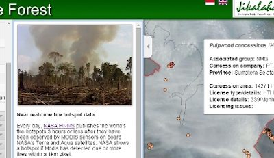 These maps, tables show you why Sinar Mas/APP companies linked to forest fires, haze