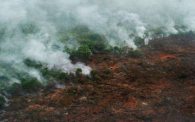Too Much Hot Air – Paper's Climate Change Impacts in Indonesia