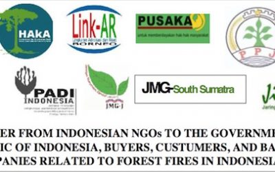 Open Letter From Indonesian NGOs to the Government of The Republic of Indonesia, Buyers, Customers, and Banks of Companies Related to Forest Fires in Indonesia