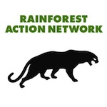 Seismic Shift in US Publishing Sector as Major Players Shun Rainforest Destruction