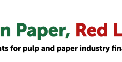 RED LINES FOR PULP MILL FINANCE