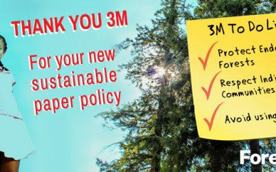 ForestEthics Applauds 3M's New Industry-Leading Sustainability Plan