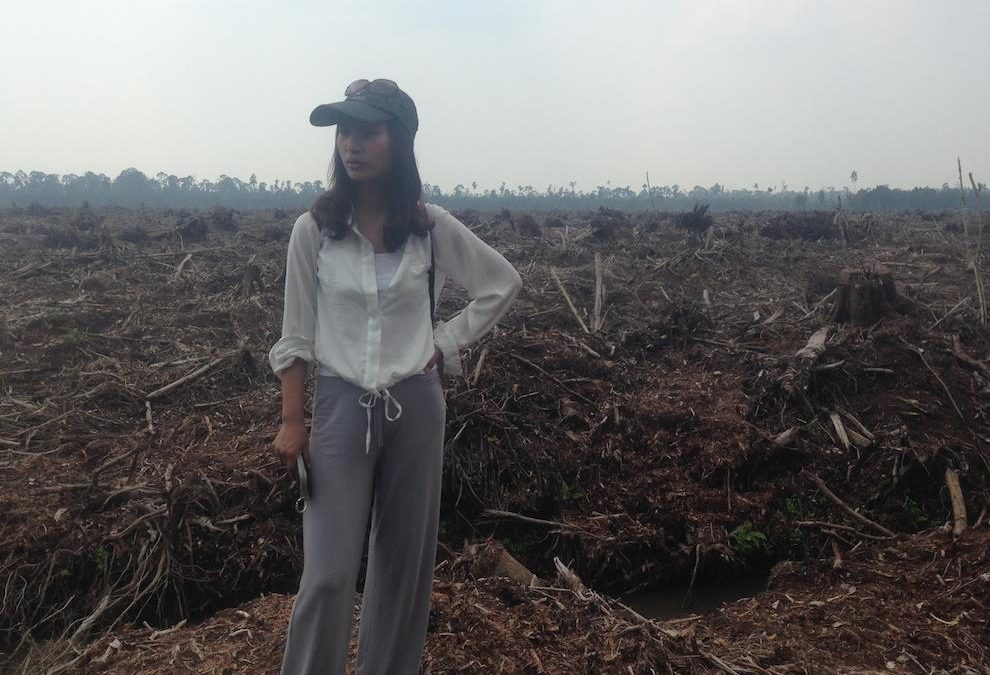 New factsheet shows forest destruction and social conflict caused by APRIL in Indonesia