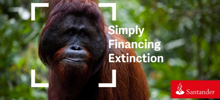 "Banks lend almost $2bn to ""Indonesia's biggest forest destroyer"""