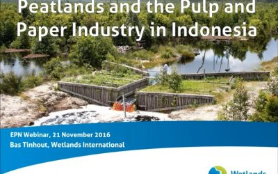 EPN Webinar on Peatlands and the Pulp and Paper Industry in Indonesia