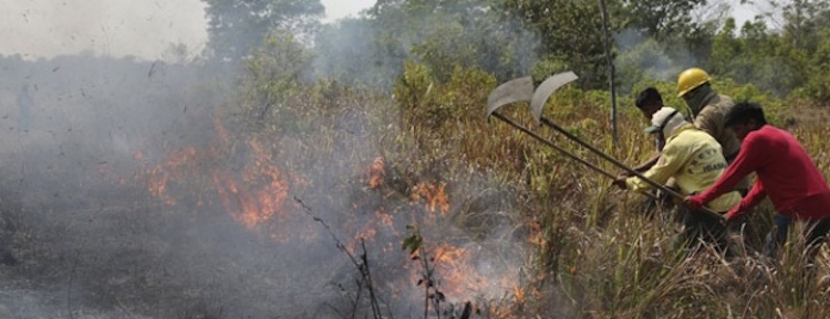Investigation links APP with fires and controversial suppliers