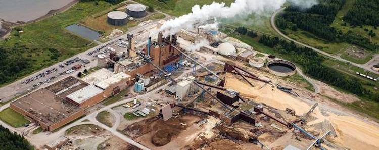 Northern Pulp Controversy in Nova Scotia Community….Again