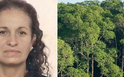 More than 50 NGOs call for justice for Rosane Santiago Silveira