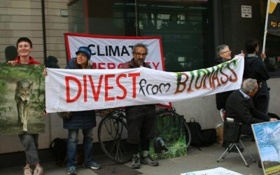CSOs call on BlackRock to divest from wood-burning energy