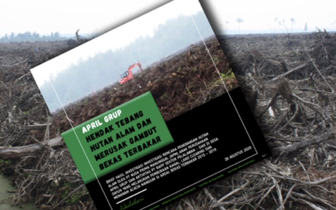 APRIL Group Keeps Destroying Peatlands and Natural Rainforests Amid Covid-19