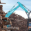"APRIL's Links with Supplier in Borneo Undercut ""No Deforestation"" Pledge"