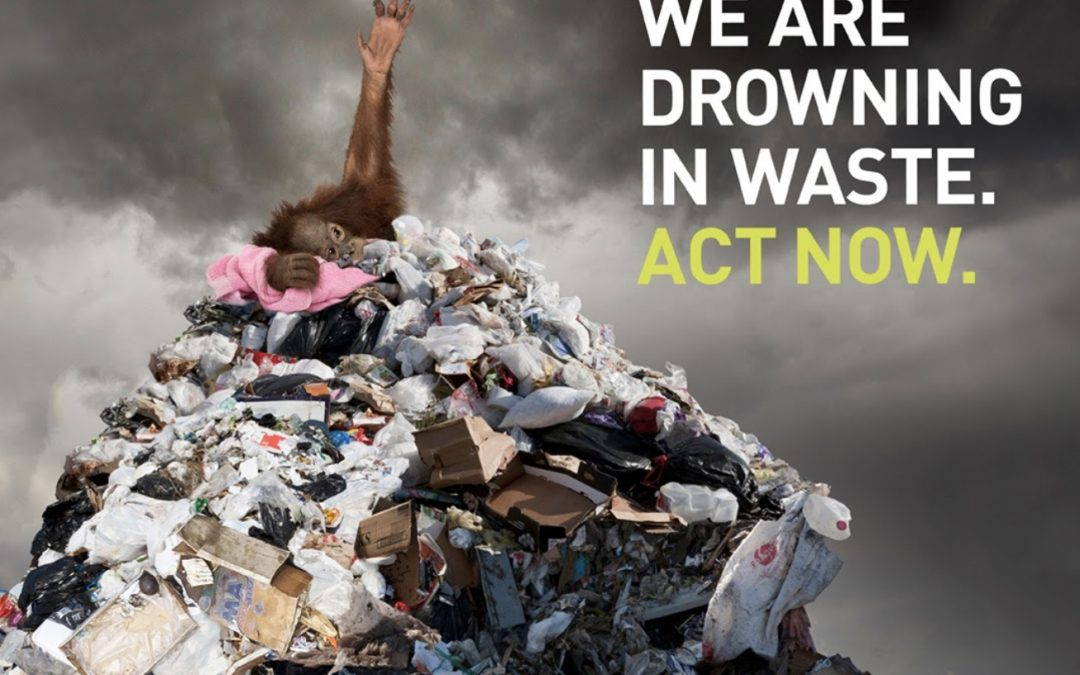 188 groups say it's time to 'make the throw-away go away'
